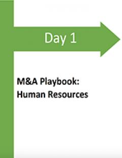 Post Acquisition Integration Plan | Framework