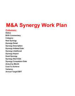M&A Synergy Work Plan