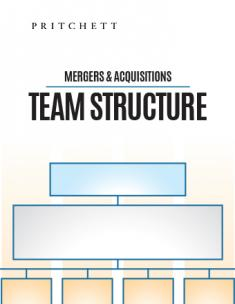 Mergers & Acquisitions Team Structure