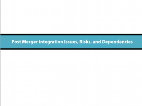 Risks, Dependencies and Mitigation Steps by Function